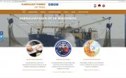 website-tx10-20