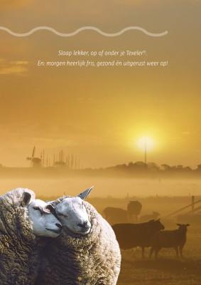 Texeler-brochurebladerboek34